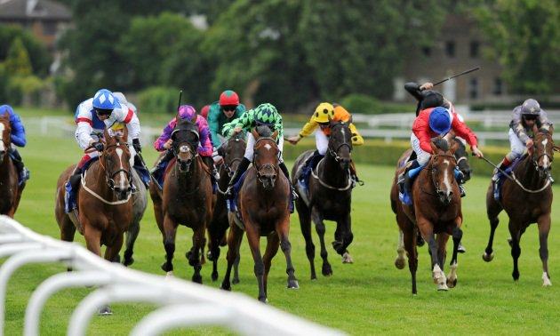 ayr-gold-cup-tips