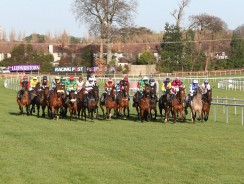 Leopardstown tips for Sunday