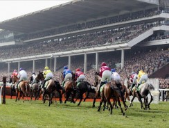 Open Meeting Day Three – Sunday's Tips