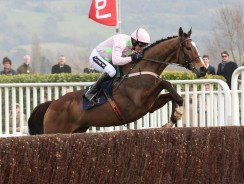 The stride, the pace, the graceful jumping – Thank you for the memories, Vautour