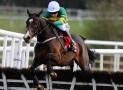 Three favourites that won't be winning at the Cheltenham Festival